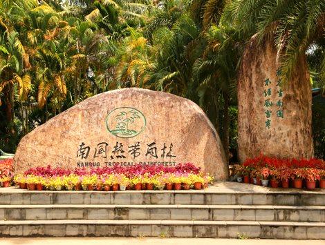 南国热带雨林风景区