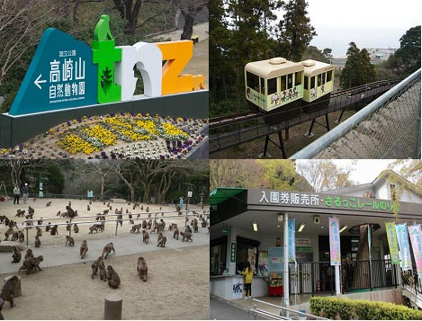 国立高崎山自然动物园